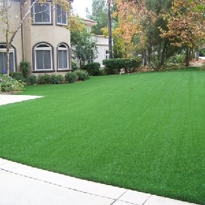 Artificial Grass Suppliers to the Trade